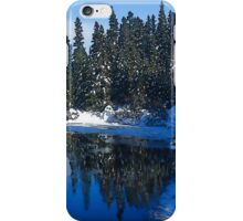 Cool Blue Shadows - Riverbank Winter Forest iPhone Case/Skin