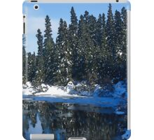 Cool Blue Shadows - Riverbank Winter Forest iPad Case/Skin