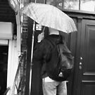 Is Anne Frank Home? by Marmadas