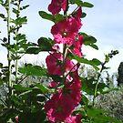 Flower Tower by Marmadas