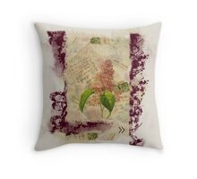 Vintage Love Throw Pillow