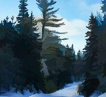 Winter Mood Impressions - Snowy Road in Algonquin by Georgia Mizuleva