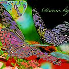 Dream Big by Bonnie T.  Barry