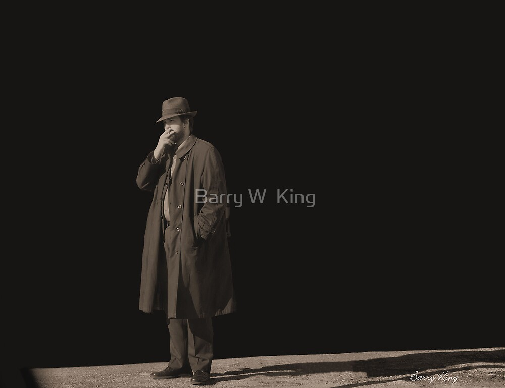 The Stranger by Barry W  King