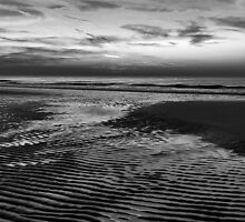 Dusk In Black And White by Pepijn Sauer