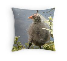 So young he is still bald Throw Pillow