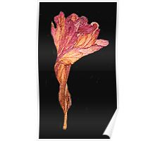 Wilted Flower ; Element Of Clay Poster