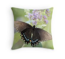 Bulls Eye Throw Pillow