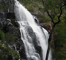 McKenzie falls by mtomlin