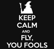 Keep calm and fly you fools by JJFarquitectos