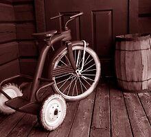 tricycle by derrickh