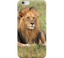 Male Lion On The Masai Mara  iPhone Case/Skin