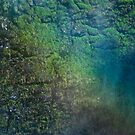 Rainbow Walls by Tom Vaughan