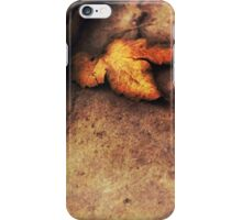 Autumn's coming iPhone Case/Skin