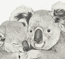 Koalas love hugs by lauragraves