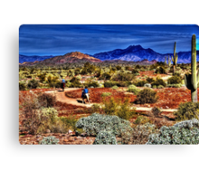 Along the Sonoran Trail Canvas Print