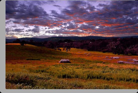 Farmland Sunrise  by EOS20