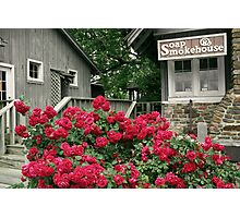 Mountain Roses Photographic Print