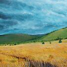 """Plateau de l""""Aubrac by MARTIN LITHGOW"""