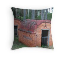 Duck for Cover Throw Pillow