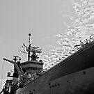 Ark Royal by Pinhead Industries