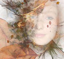 Metamorphosis by Chris  Willis