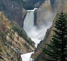 Waterfalls in Yellowstone National Park by Deborah  Allen