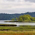 Johnson's Point panorama by Bryan Peterson