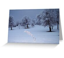 winter in Oklahoma Greeting Card