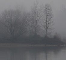 Foggy Willamette by AmishElectricCo