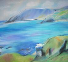 Treen Cove by Susie J