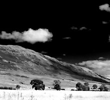 The Campsie Fells by Paul Cook