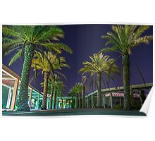 PALM TREES AT NIGHT Poster