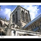 York Minster by Mark  Jones