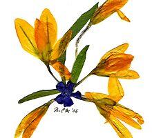 Spring Fling '06 - CROCUS by memac