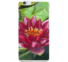 Among Lily Pads Pastel iPhone Case/Skin