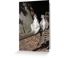 Who's Driving This Log? Greeting Card