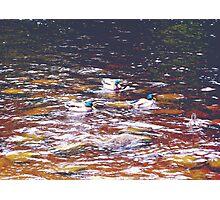 Amber Water Photographic Print