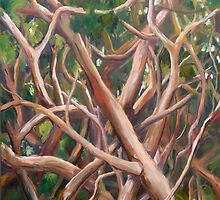 Thicket by Lyn Fabian