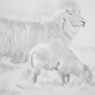 Sheep and Lamb Drawing by MikeJory