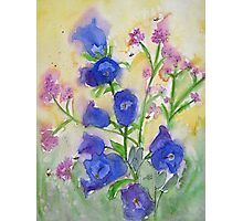 Bluebells and Bees Watercolor Photographic Print