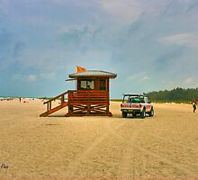 Lifeguard on Duty by Roland Pozo
