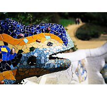 Gaudi's Lizard Photographic Print