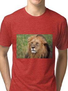 Masai Mara Lion Portrait    Tri-blend T-Shirt
