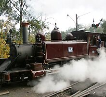 Puffing Billy  by Tony Waite-Pullan
