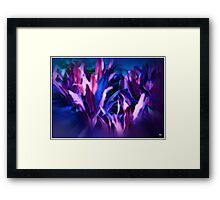 Earthbound Passions Framed Print
