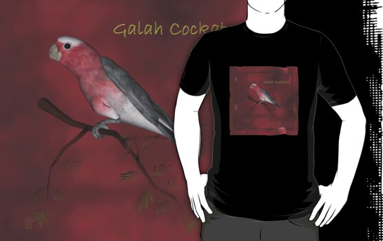 Galah Cockatoo by Lisa  Weber