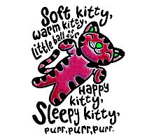The Big Bang Theory - Soft Kitty Photographic Print