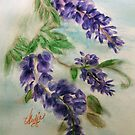 Wisteria by coppertrees