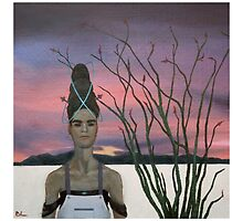 Henrietta and the Ocotillo by BorisLarimer